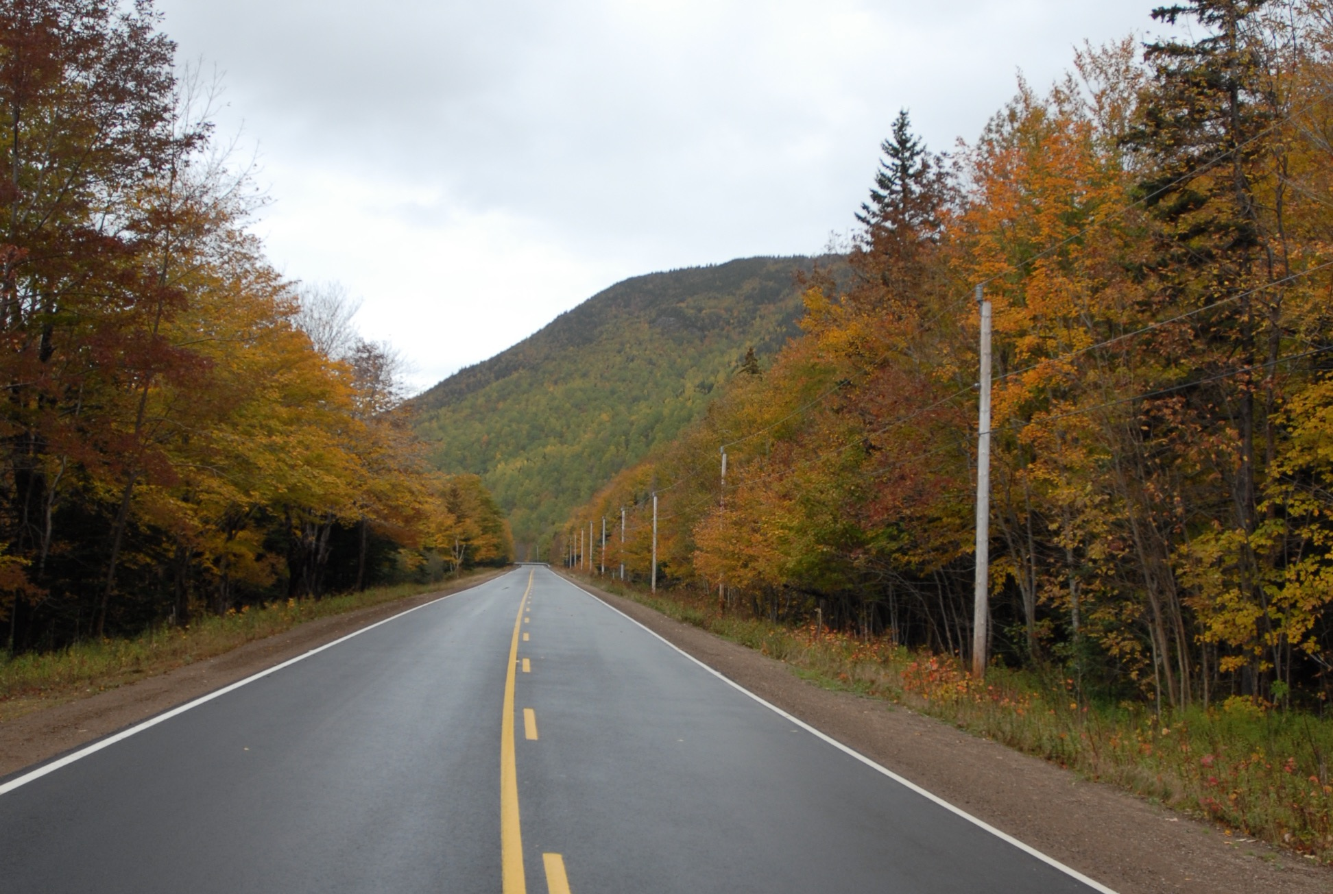 search-cabot-trail-road-1